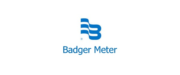 Badger Water Meter